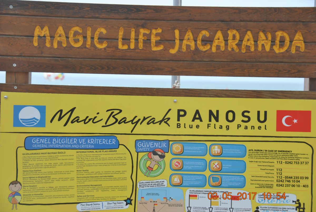 poze MAGIC LIFE JACARANDA 5 stele